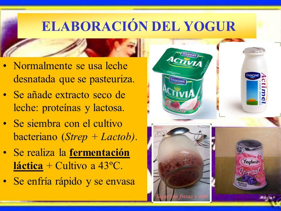 ELABORACIÓN DEL YOGUR Normalmente se usa leche desnatada que se pasteuriza. Se añade extracto seco de leche: proteínas y lactosa.