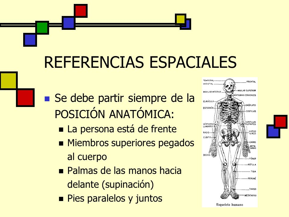 REFERENCIAS ESPACIALES