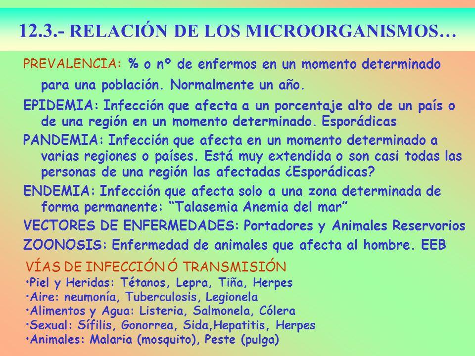 12.3.- RELACIÓN DE LOS MICROORGANISMOS…