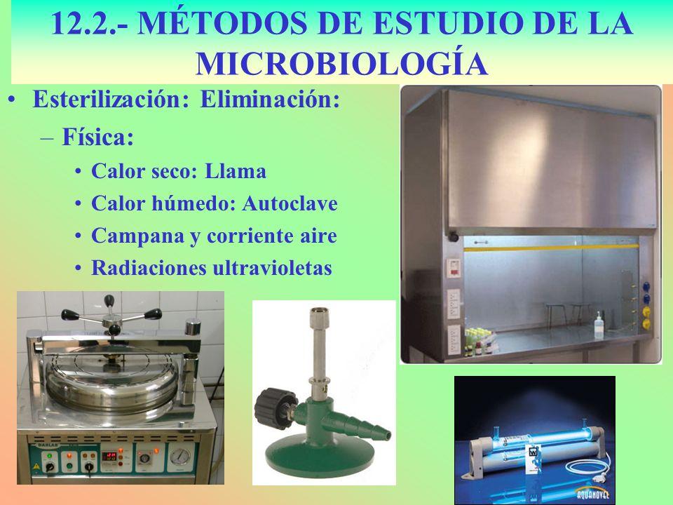 12.2.- MÉTODOS DE ESTUDIO DE LA MICROBIOLOGÍA