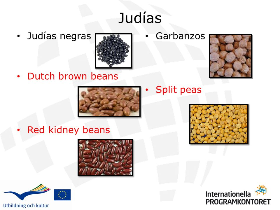 Judías Judías negras Dutch brown beans Red kidney beans Garbanzos