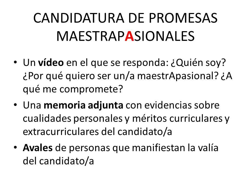 CANDIDATURA DE PROMESAS MAESTRAPASIONALES