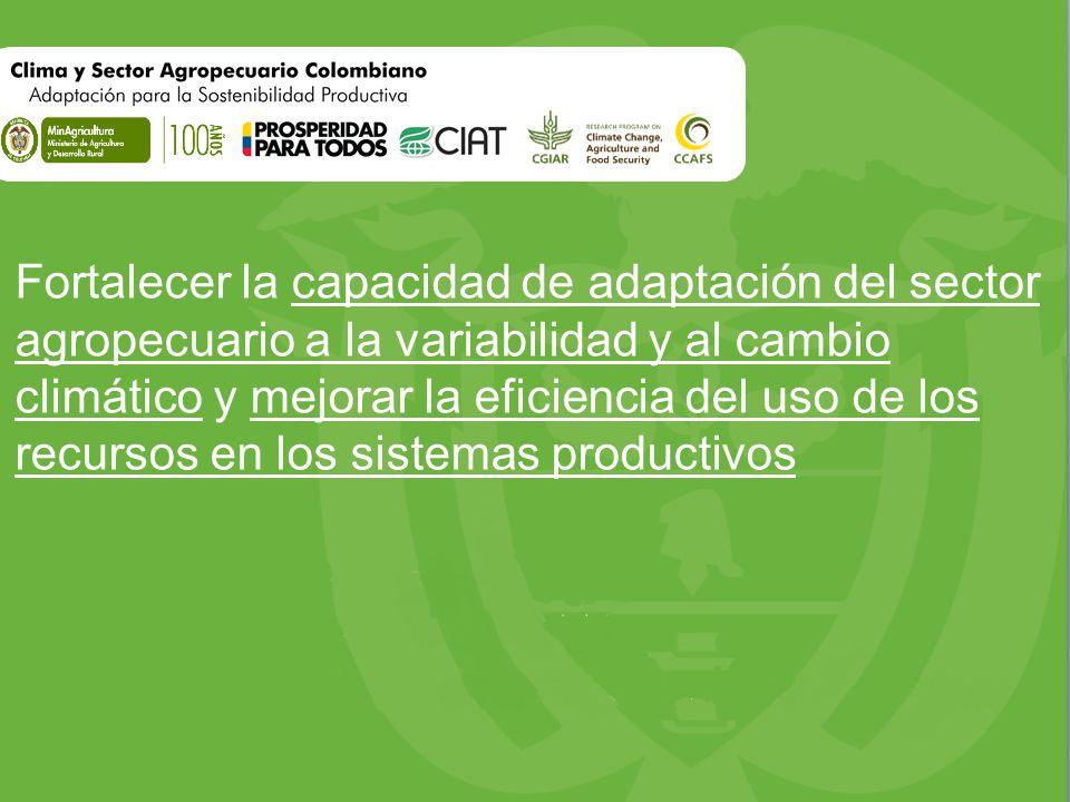 Fortalecer la capacidad de adaptación del sector agropecuario a la variabilidad y al cambio climático y mejorar la eficiencia del uso de los recursos en los sistemas productivos