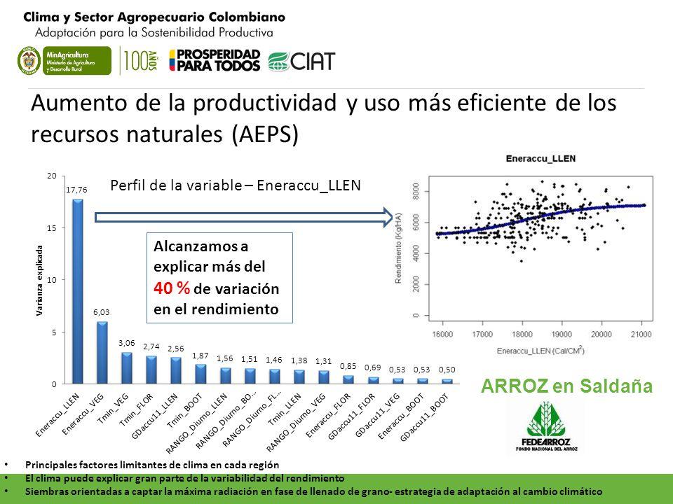 Aumento de la productividad y uso más eficiente de los recursos naturales (AEPS)