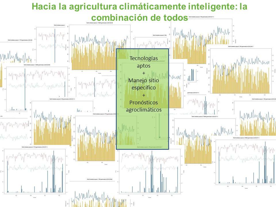 Hacia la agricultura climáticamente inteligente: la combinación de todos