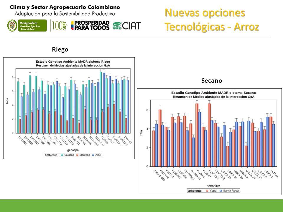 Nuevas opciones Tecnológicas - Arroz Riego Secano