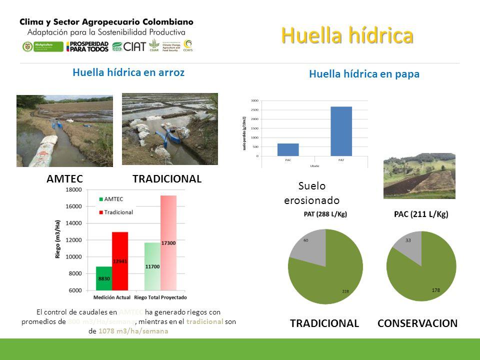 Huella hídrica en arroz TRADICIONAL CONSERVACION