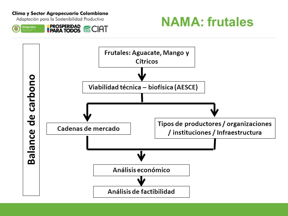 NAMA: frutales Balance de carbono Frutales: Aguacate, Mango y Cítricos