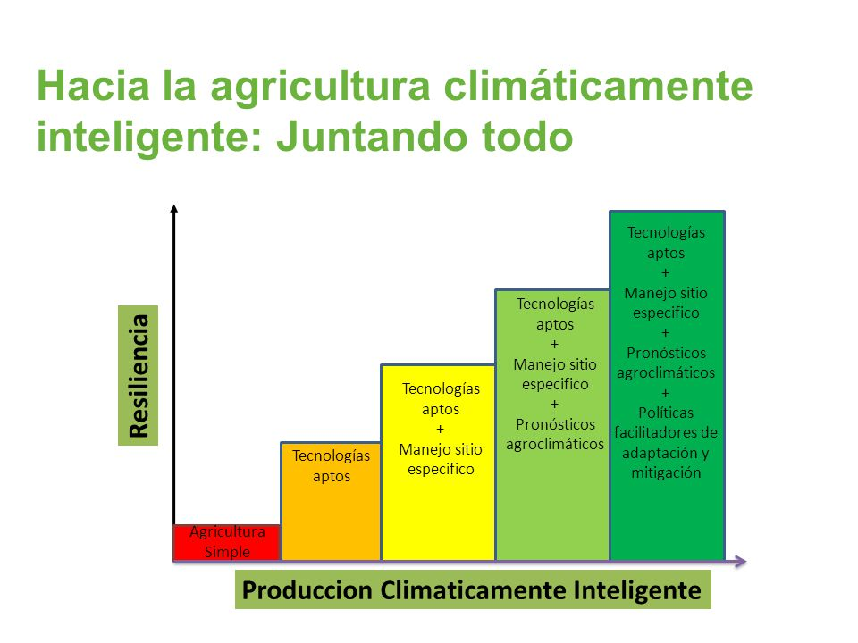 Hacia la agricultura climáticamente inteligente: Juntando todo
