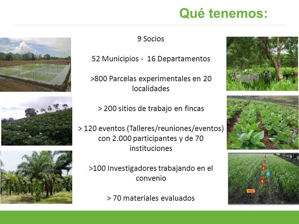 Qué tenemos: 9 Socios 52 Municipios - 16 Departamentos