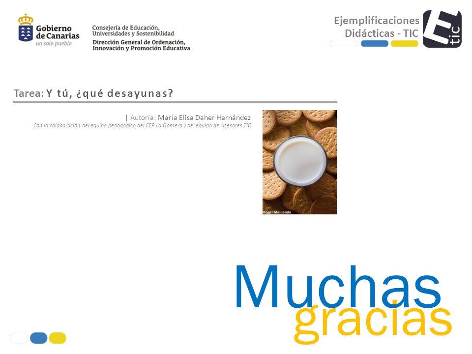 Muchas gracias Ejemplificaciones Didácticas - TIC