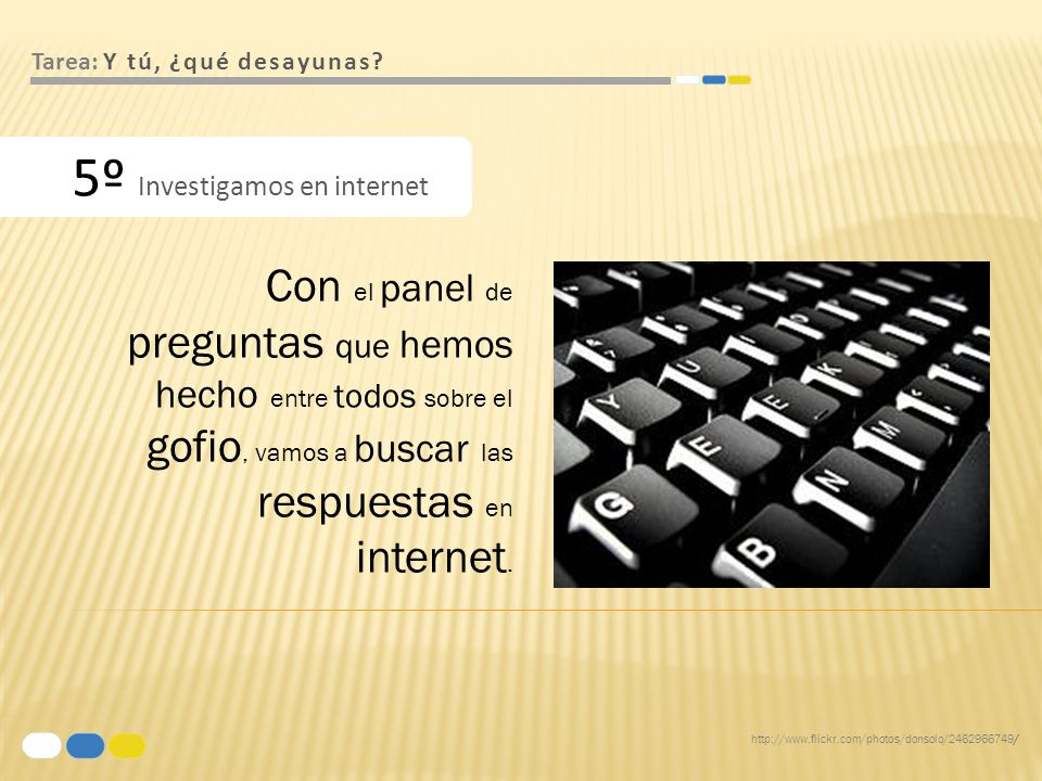 5º Investigamos en internet