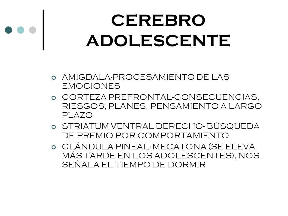 CEREBRO ADOLESCENTE AMIGDALA-PROCESAMIENTO DE LAS EMOCIONES