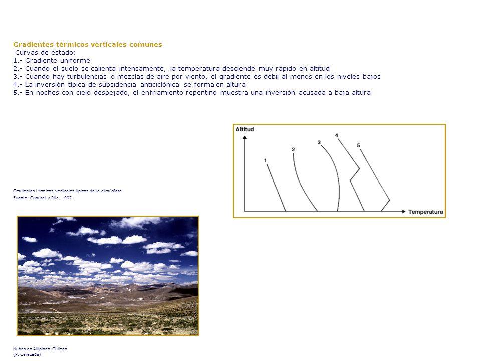 Nubes en Altiplano Chileno (P. Cereceda)
