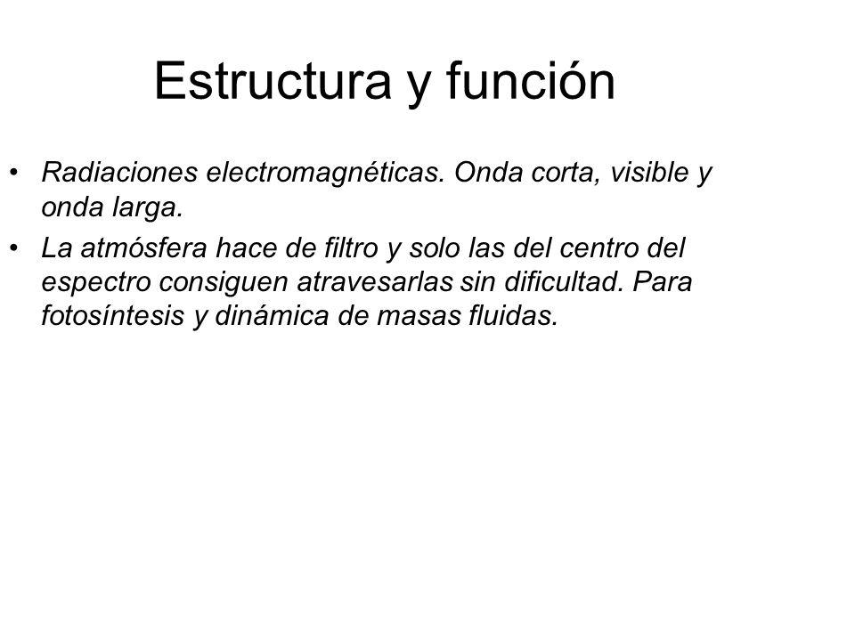 Estructura y función Radiaciones electromagnéticas. Onda corta, visible y onda larga.