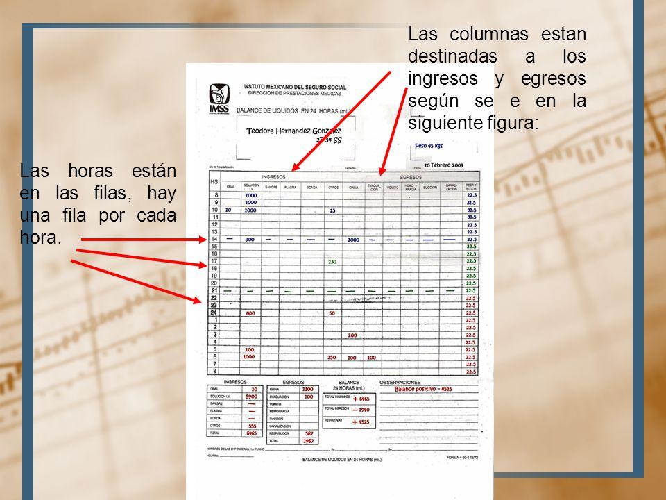 Las columnas estan destinadas a los ingresos y egresos según se e en la siguiente figura: