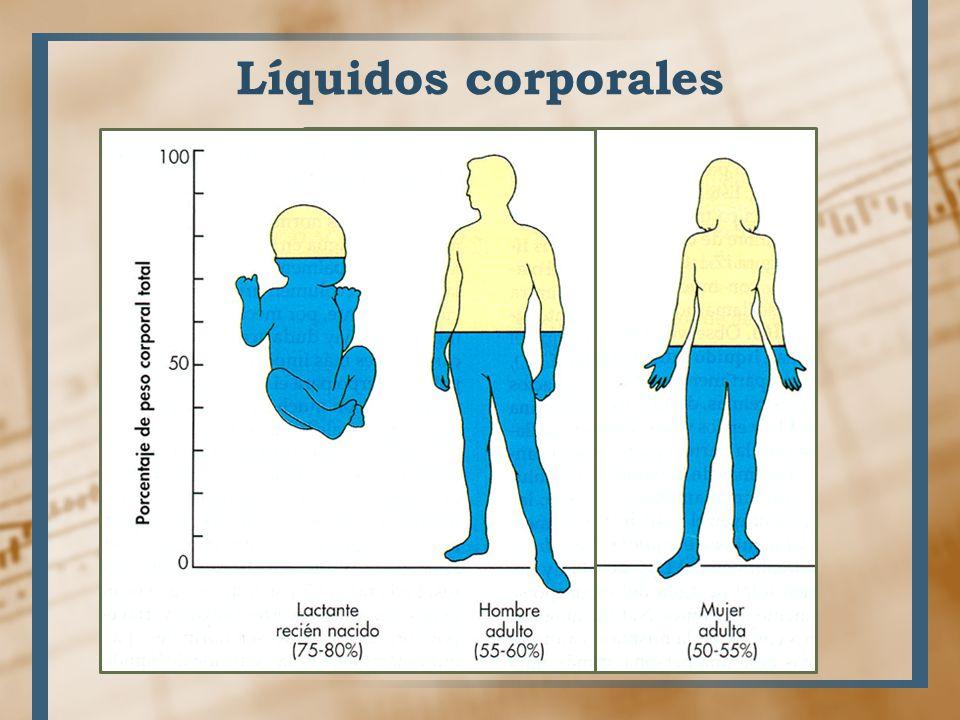 Líquidos corporales