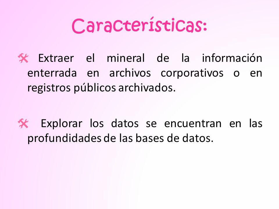 Características: Extraer el mineral de la información enterrada en archivos corporativos o en registros públicos archivados.