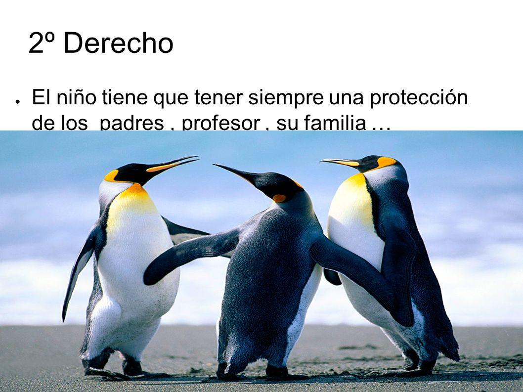 2º Derecho El niño tiene que tener siempre una protección de los padres , profesor , su familia …