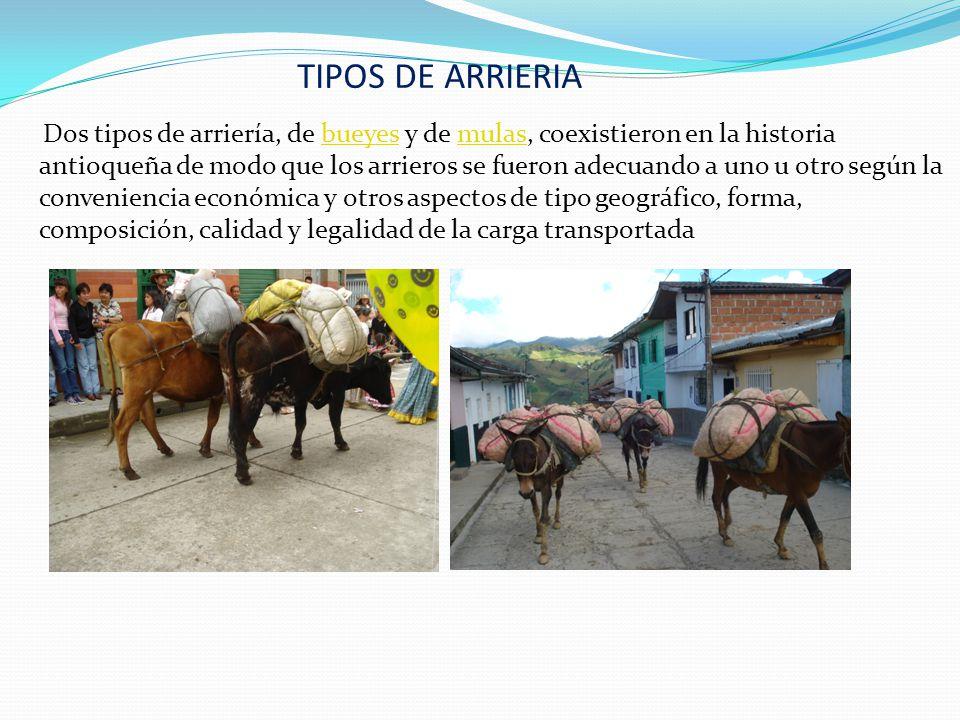 TIPOS DE ARRIERIA