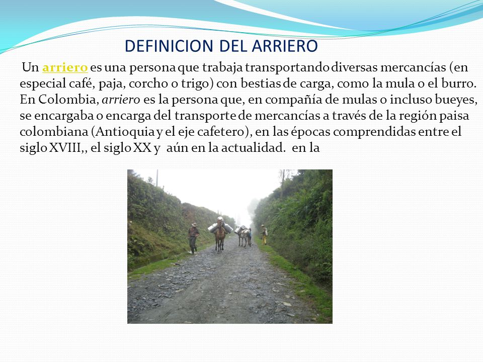DEFINICION DEL ARRIERO