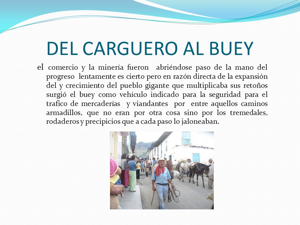 DEL CARGUERO AL BUEY