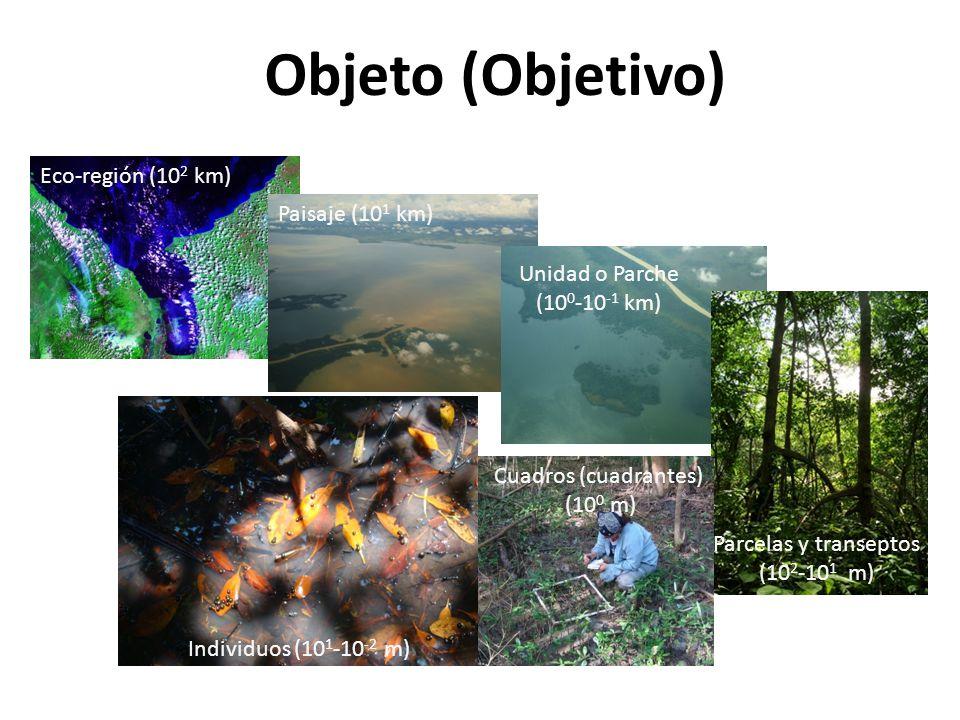 Objeto (Objetivo) Eco-región (102 km) Paisaje (101 km) Unidad o Parche