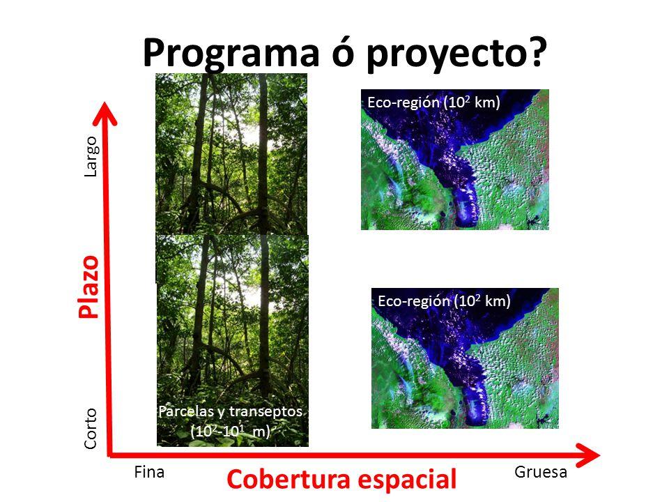 Programa ó proyecto Plazo Cobertura espacial Largo Corto Gruesa Fina