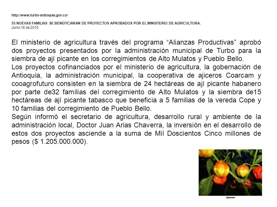 http://www.turbo-antioquia.gov.co/ 55 NUEVAS FAMILIAS SE BENEFICIARAN DE PROYECTOS APROBADOS POR EL MINISTERIO DE AGRICULTURA.