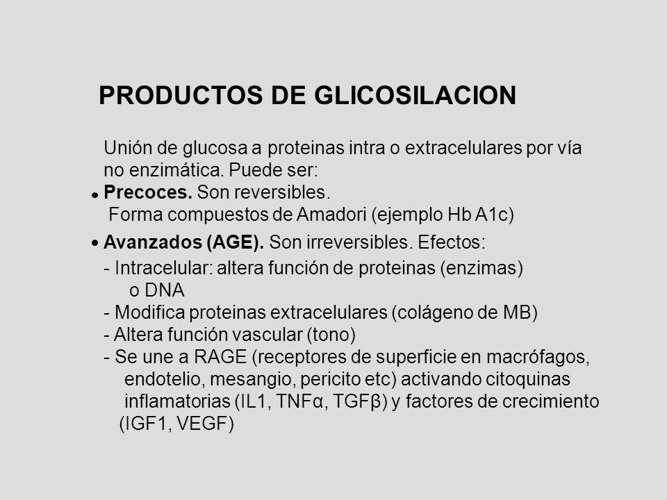 PRODUCTOS DE GLICOSILACION