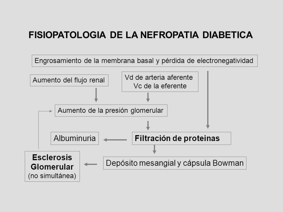 Filtración de proteinas