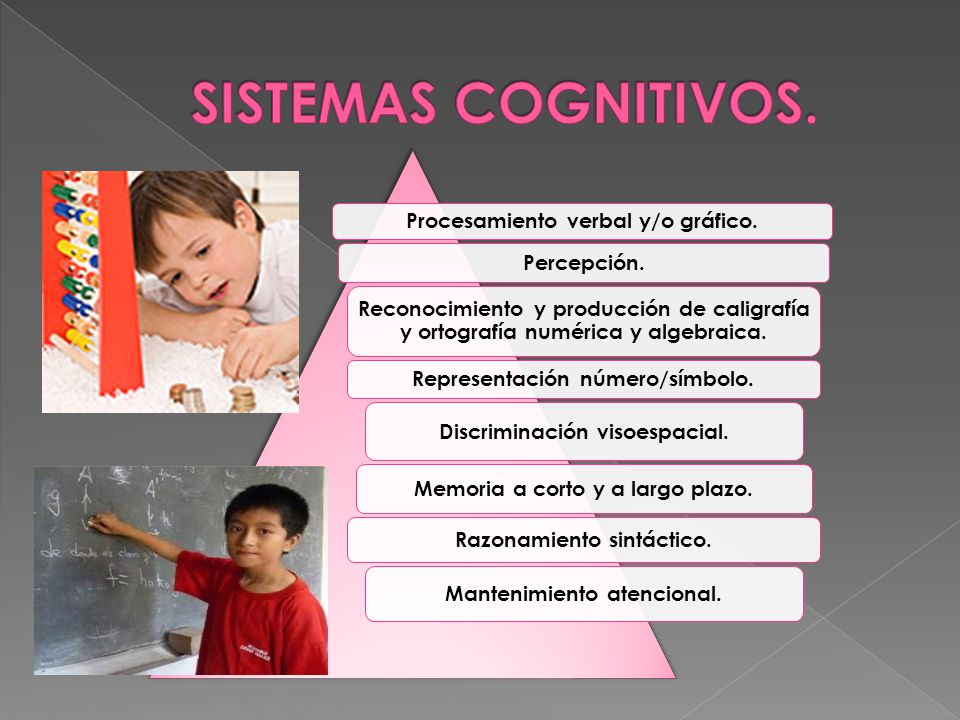 SISTEMAS COGNITIVOS. Procesamiento verbal y/o gráfico. Percepción.