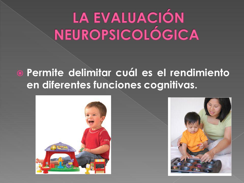 LA EVALUACIÓN NEUROPSICOLÓGICA