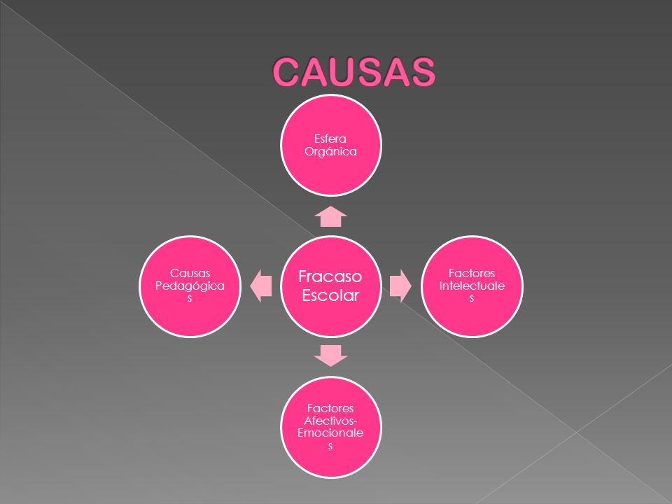 CAUSAS Esfera Orgánica Factores Intelectuales