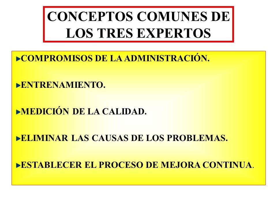 CONCEPTOS COMUNES DE LOS TRES EXPERTOS
