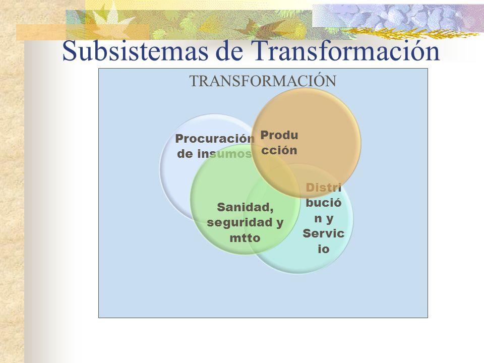 Subsistemas de Transformación