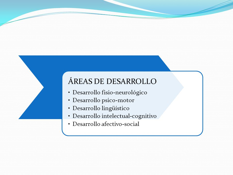 ÁREAS DE DESARROLLO Desarrollo fisio-neurológico
