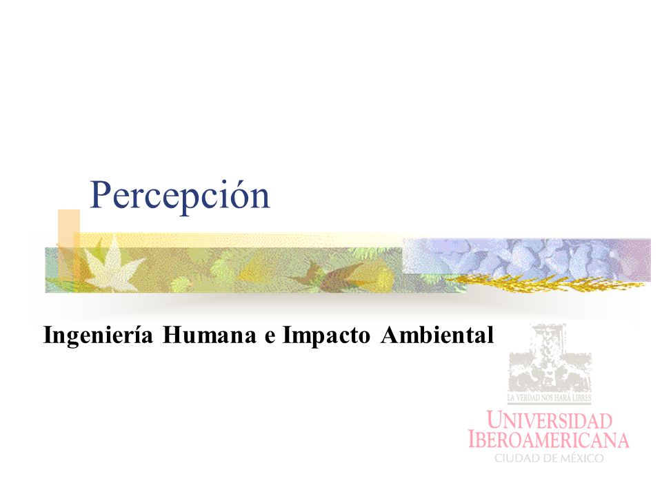 Ingeniería Humana e Impacto Ambiental