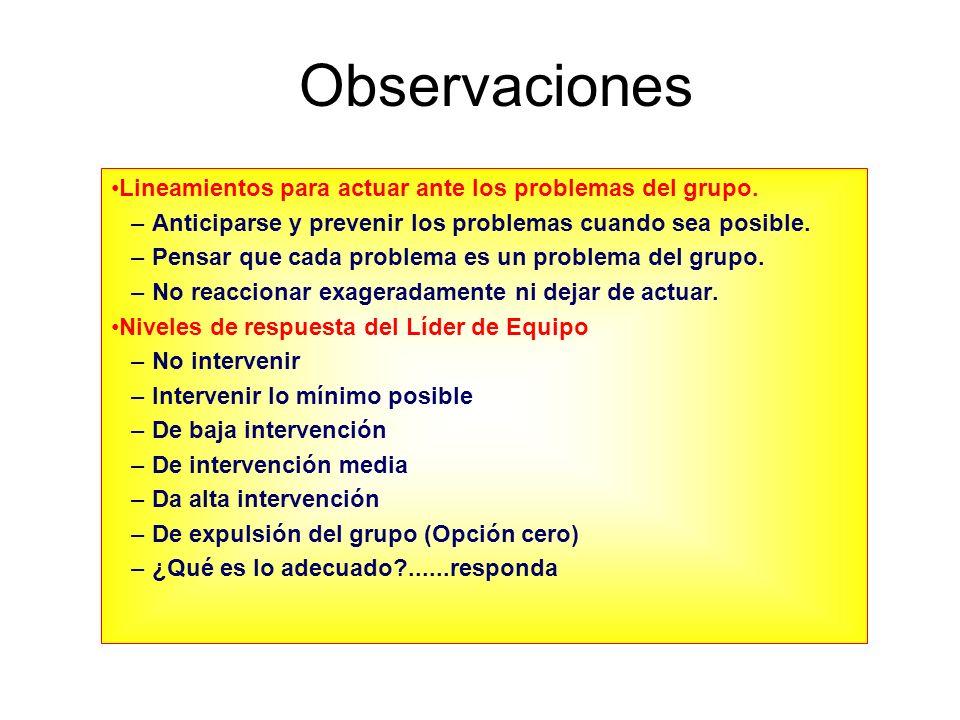 Observaciones Lineamientos para actuar ante los problemas del grupo.