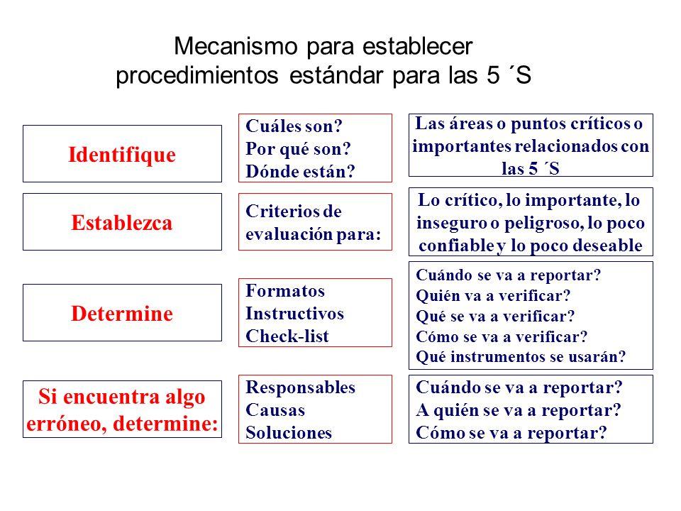 Mecanismo para establecer procedimientos estándar para las 5 ´S