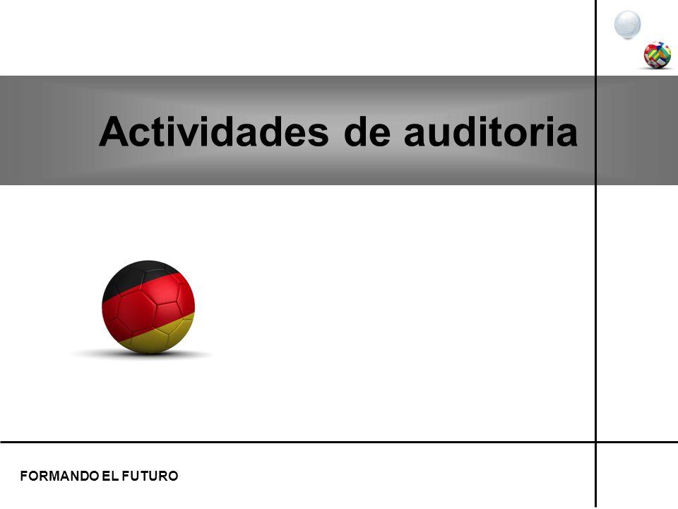 Actividades de auditoria