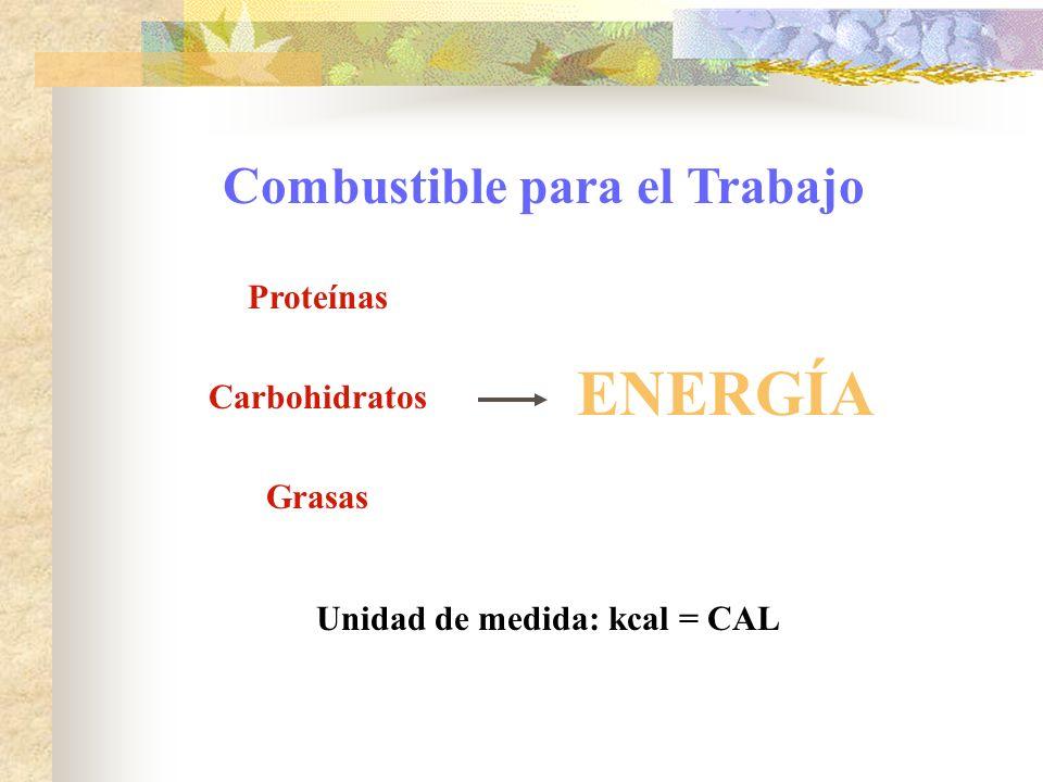 Combustible para el Trabajo Unidad de medida: kcal = CAL