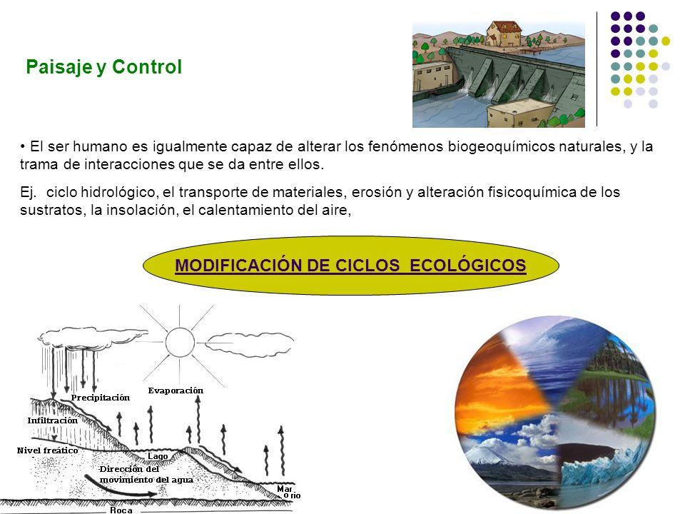 MODIFICACIÓN DE CICLOS ECOLÓGICOS
