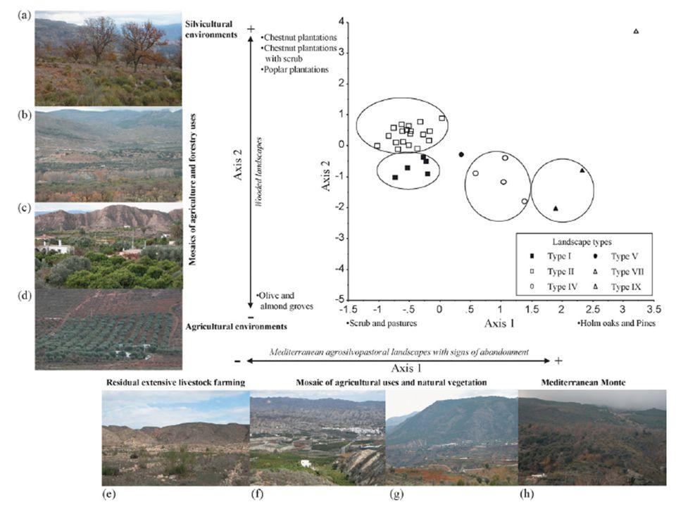 Investigación: Modelización de cambios en el paisaje.