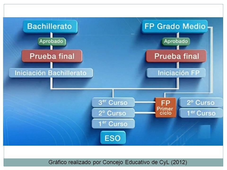 Gráfico realizado por Concejo Educativo de CyL (2012)