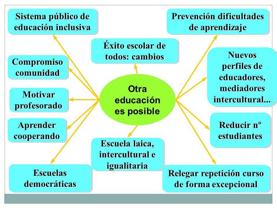 Sistema público de educación inclusiva