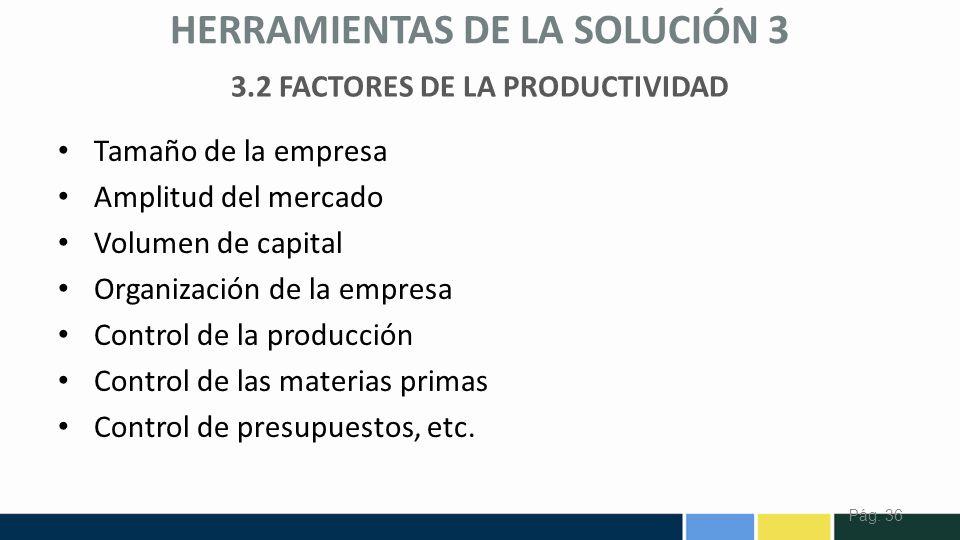 3.2 FACTORES DE LA PRODUCTIVIDAD
