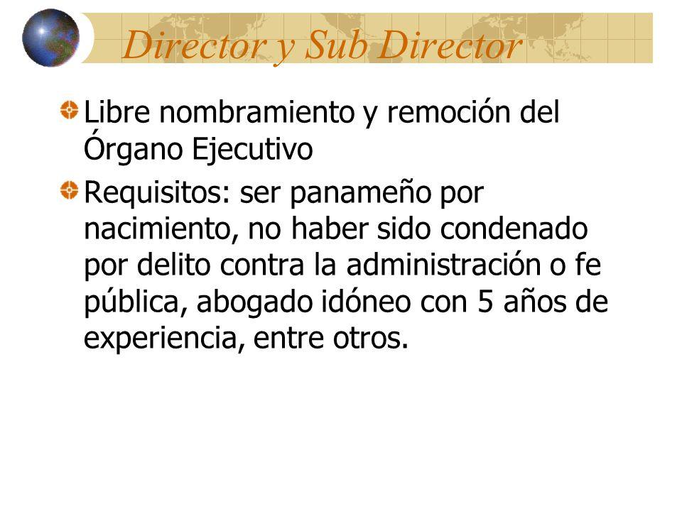 Director y Sub Director