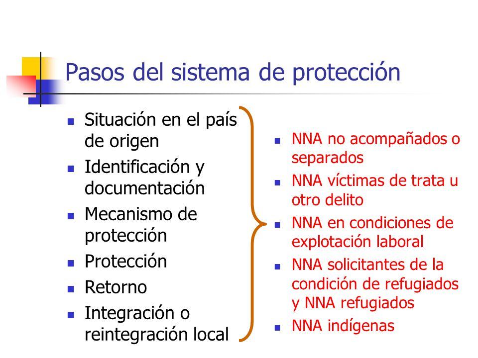 Pasos del sistema de protección