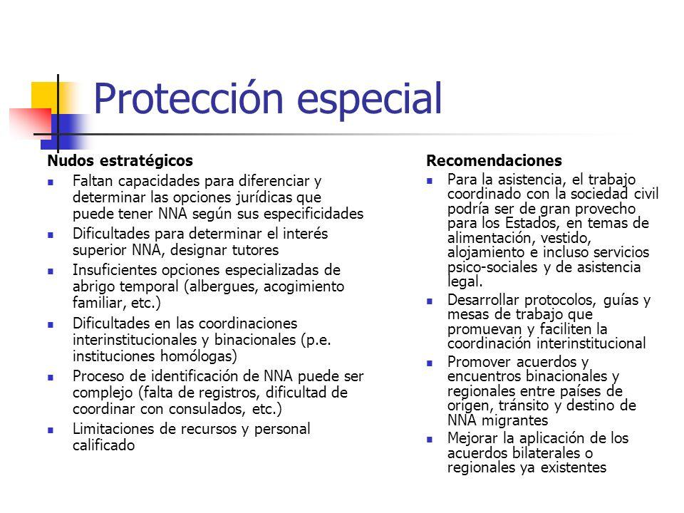 Protección especial Nudos estratégicos Recomendaciones